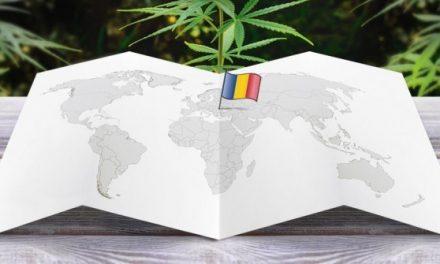 A Román szenátus hallgatólagosan elfogadta az orvosi marihuána használatát!