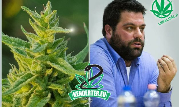 """""""Szánalmas, rossz vicc, ahogy az állam bűnözőket kreál"""" – interjú Sermer Ádámmal a Legalizálj Egyesület elnökével"""